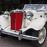 Klassisk vetranbil